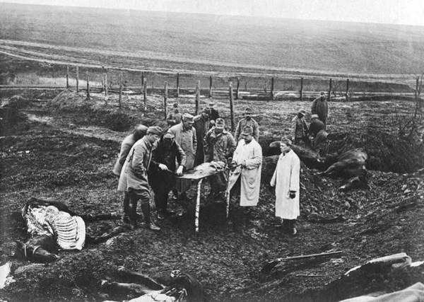 Photograph - Battlefield Horse Autopsies by Underwood Archives