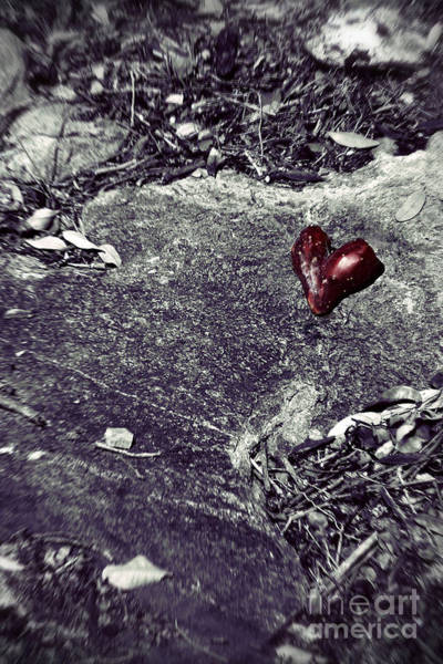 Wall Art - Photograph - Battlefield Of Love by Trish Mistric
