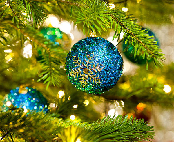 Bauble In A Christmas Tree  Art Print