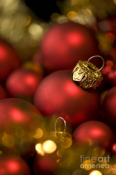 Yule Photograph - Baubles by Anne Gilbert