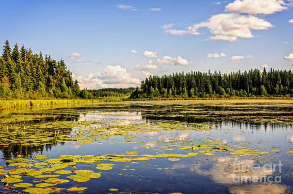 Waskesiu Photograph - Bay At The Waskesiu Lake With Lily by Viktor Birkus