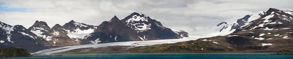 Glacier Bay Photograph - Bay In Front Of Snow Covered Mountains by Panoramic Images