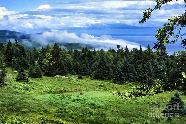 Wall Art - Photograph - Bay Of Fundy From Fundy National Park by Thomas R Fletcher