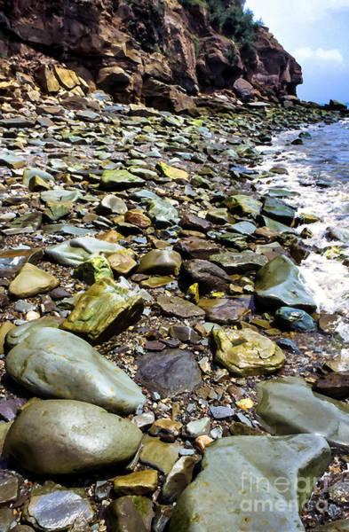 Photograph - Bay Of Fundy Shoreline by Thomas R Fletcher