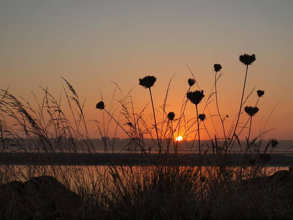 Photograph - Bay Sunset by HW Kateley