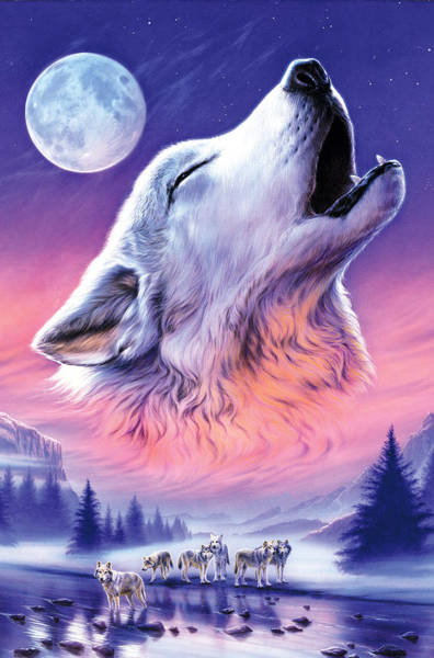 Howling Photograph - Baying To The Moon by MGL Meiklejohn Graphics Licensing