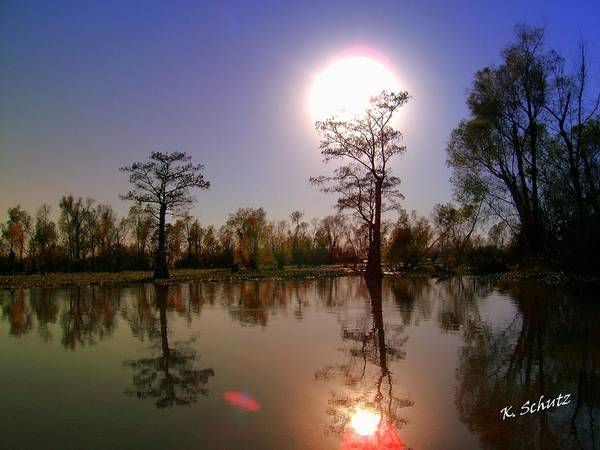 Baton Rouge Digital Art - Bayou by Kelly Schutz
