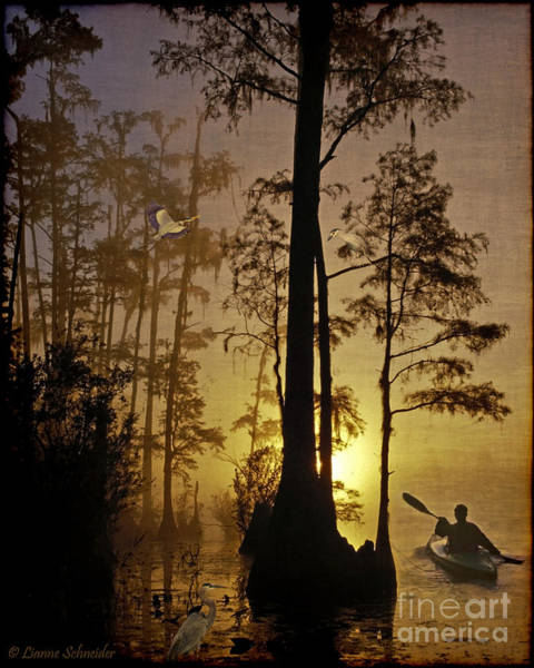 Tides Digital Art - Bayou Sunrise by Lianne Schneider