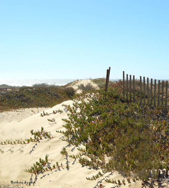 Fence Post Digital Art - Beach Access by Barbara Snyder