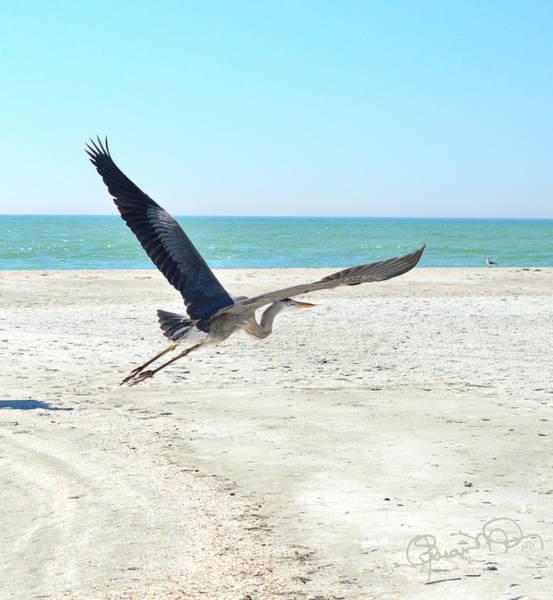 Photograph - Beach Angel by Susan Molnar