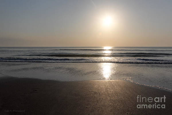 Photograph - Beach At Sunrise by Todd Blanchard