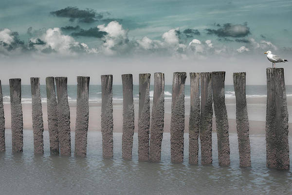 Cloudy Photograph - Beach Bars by Bernardine De Laat