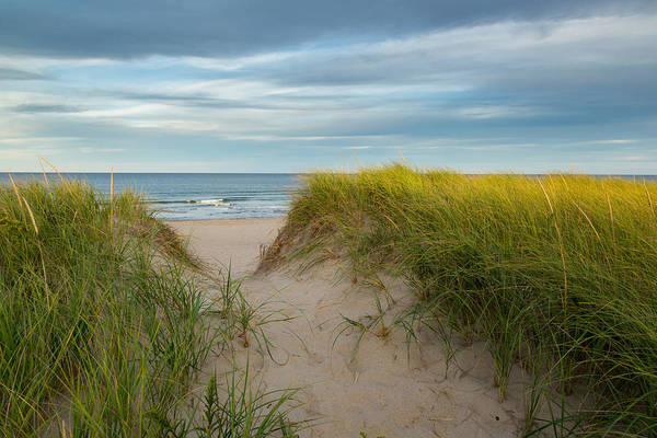 Photograph - Beach by Bill Wakeley