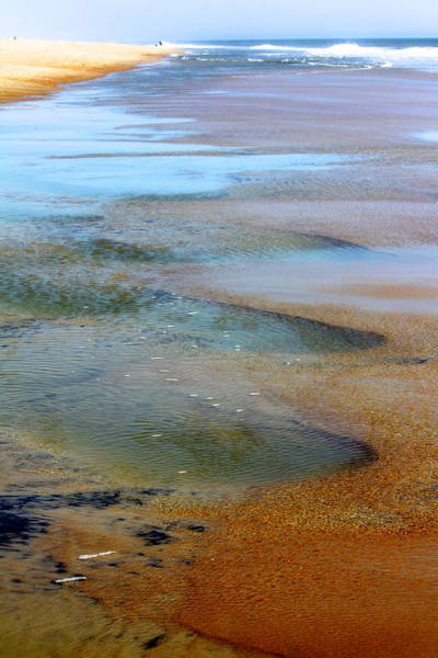 Photograph - Beach Colors by Karen Saunders