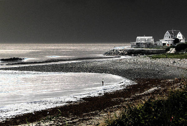 Photograph - Beach Comber by Ron White