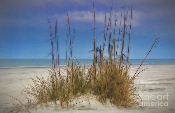 Photograph - Beach Dream by Dave Bosse
