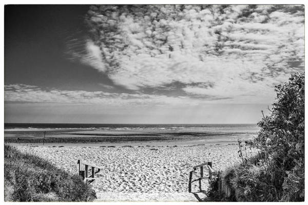 Wall Art - Photograph - Beach Entrance In Black And White by Georgia Fowler