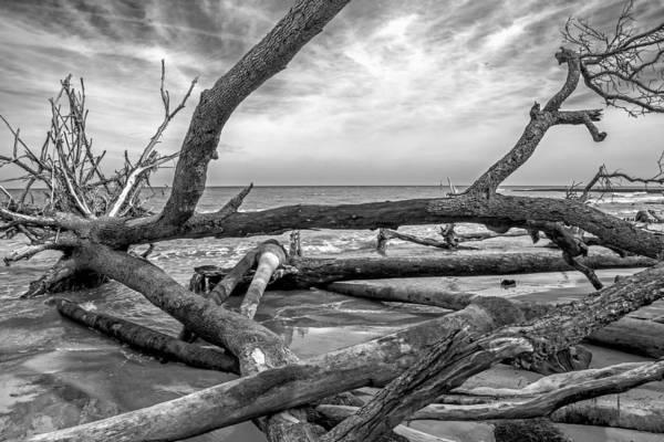 Photograph - Beach Eroson Bw 04 by Jim Dollar