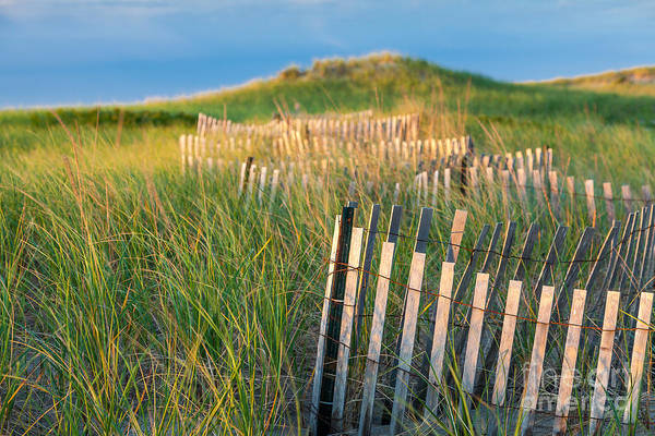 Photograph - Beach Fence by Susan Cole Kelly