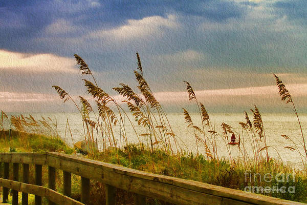 Photograph - Beach Grass by Deborah Benoit
