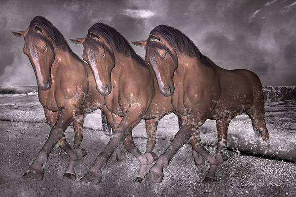 White Horse Digital Art - Beach Horse Trio Night March by Betsy Knapp