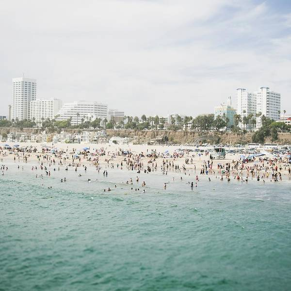Los Angeles California Photograph - Beach Life  by Bree Madden