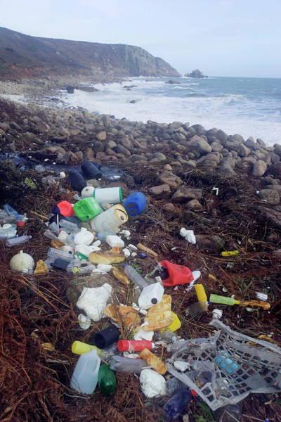 Litter Photograph - Beach Litter by Simon Fraser/science Photo Library