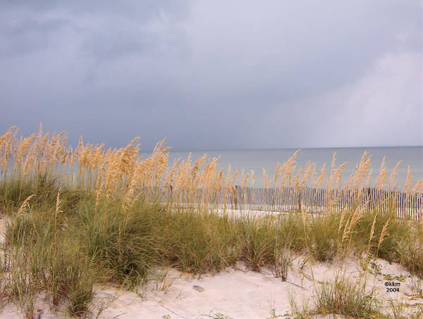 Photograph - Beach On West Ship Island by Kathy K McClellan