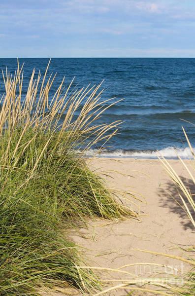 Wall Art - Photograph - Beach Path by Barbara McMahon