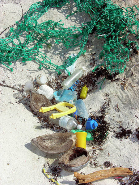Litter Photograph - Beach Pollution by Tony Craddock/science Photo Library