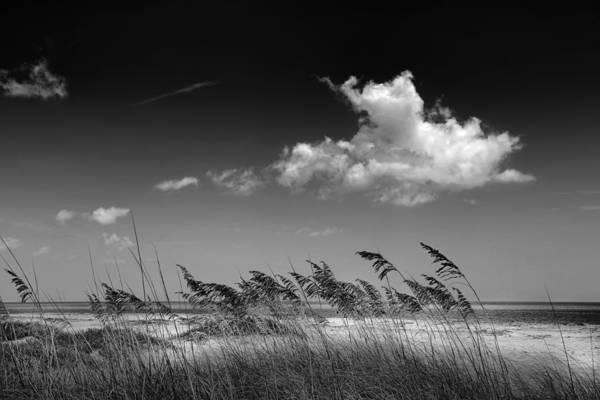 Photograph - Beach Scene by Rudy Umans