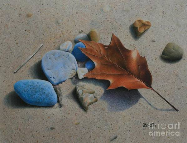 Painting - Beach Still Life II by Pamela Clements