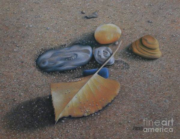Painting - Beach Still Life IIi by Pamela Clements