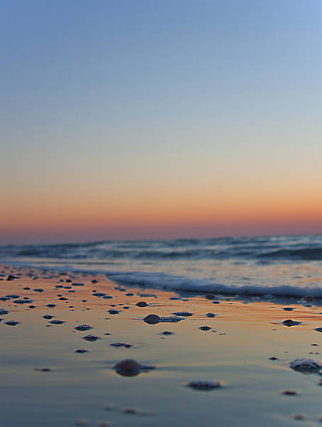 Photograph - Beach Sunset by Dart and Suze Humeston