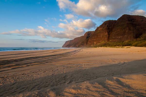 Photograph - Beach Tracks by Paul Johnson