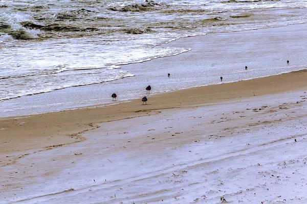 Photograph - Beachcombing - Beach - Seascape by Barry Jones