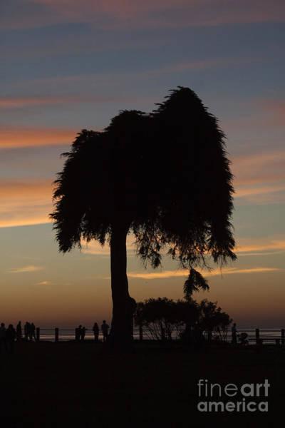 Wall Art - Photograph - Beachside Sunset In La Jolla by Ruth Jolly