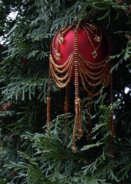 Photograph - Beaded Ball In Arborvitae by Jeffrey Peterson
