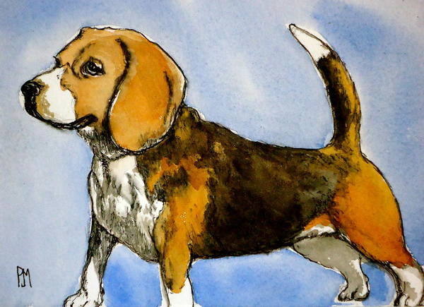 Wall Art - Painting - Beagle by Pete Maier