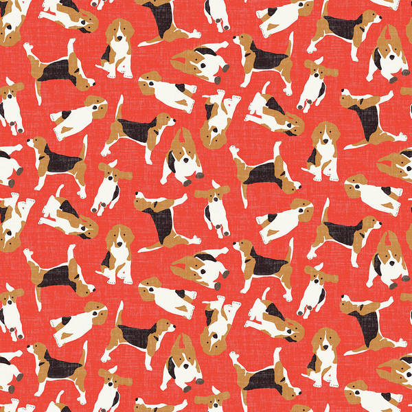 Holiday Drawing - Beagle Scatter Coral Red by MGL Meiklejohn Graphics Licensing
