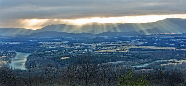 Photograph - Beaming March Shenandoah by Lara Ellis