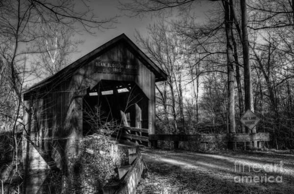 Photograph - Bean Blossom Bridge Bw by Mel Steinhauer
