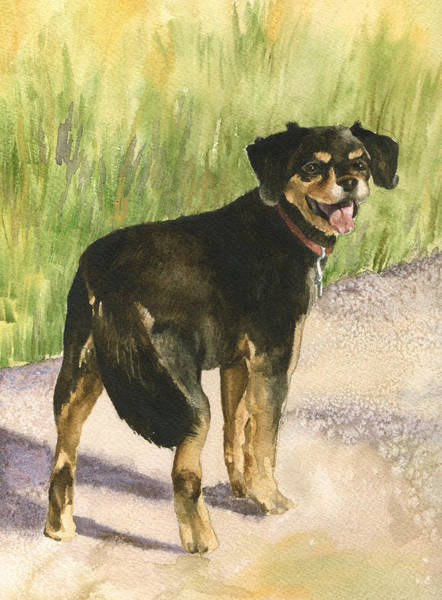 Terriers Painting - Bear by Anne Gifford