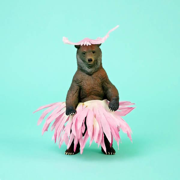 Photograph - Bear In Flower Skirt by Juj Winn