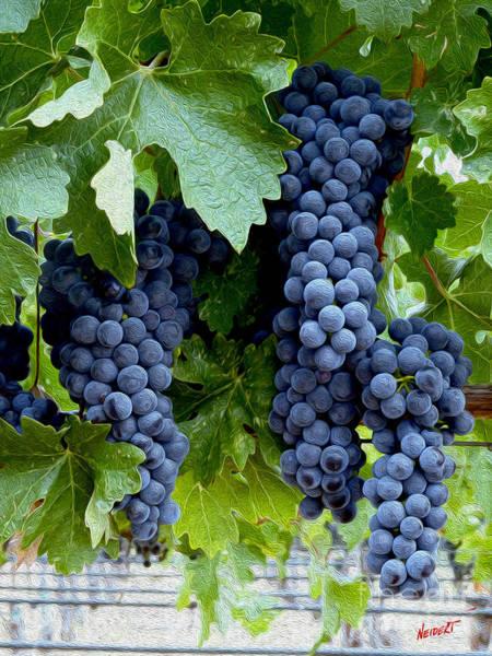 Wine Barrels Photograph - Beautiful Fruit by Jon Neidert