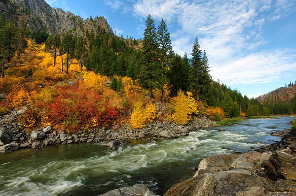 Wall Art - Photograph - Beautiful Autumn by Dan Mihai