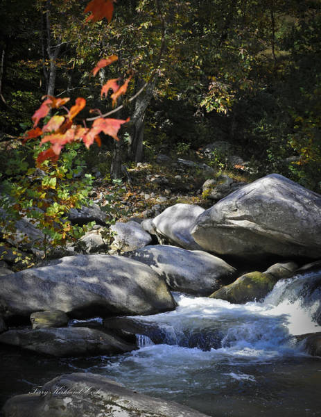 Photograph - Beautiful Autumn Stream by Terry Kirkland Cook