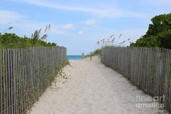 Photograph - Beautiful Beach Day by Carol Groenen