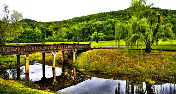 Photograph - Beautiful Blowing Spring Park by David Patterson