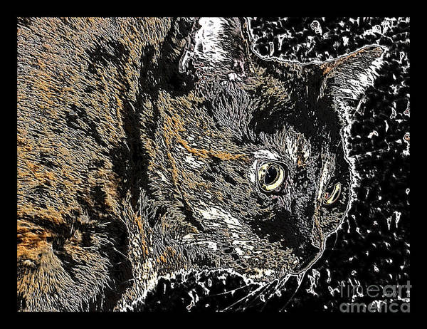 Mixed Media - Beautiful Cat Art. Black Brown by Oksana Semenchenko